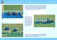 Entwicklung koordinativ-motorischer Fähigkeiten ... - KTG - Greifswald