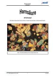"""Skript zur """"Harnsäure"""" - Medizinisches Labor 08-11's Blog"""
