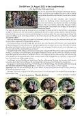 Ein Bericht - Teckelgruppe Raben - Seite 2