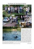 Ein Bericht - Teckelgruppe Raben - Seite 3