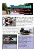 Ein Bericht - Teckelgruppe Raben - Seite 4