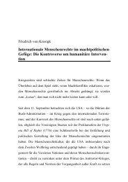 Internationale Menschenrechte im machtpolitischen Gefüge: Die ...