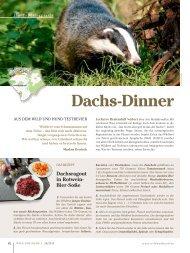 Dachs-Dinner - Wild und Hund