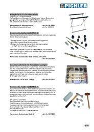 Pichler Katalog 2011.indd - Pichler Tools