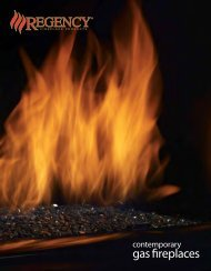 gas fireplaces - Regency Fireplace Products