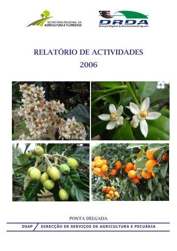 Relatório 2006 - Presidência do Governo Regional dos Açores