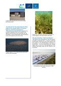 Have a look at the Aigues-Mortes Salt Marshes July 2012 ... - Salins - Page 2