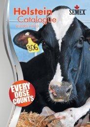 Holstein Holstein - Best Genetics