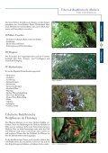 Tibetisch Buddhistische Medizin.pdf - Buddhistischer Garten - Seite 5