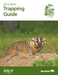 Trapping Guide - Government of Manitoba