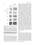 Cloning and characterization of micro-RNAs from moss - Agricultural ... - Page 7