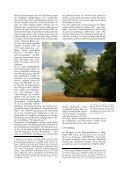 """""""Endlich so ist auch der Pappel-Baum zu betrachten …"""" - wolfslight.de - Seite 6"""