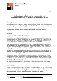 Merkblatt Instrumentalunterricht 1.Klassen MU PDF - Kantonsschule ...
