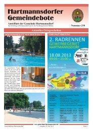 Ausgabe Juli 2013 (pdf 1.5 MB) - Hartmannsdorf