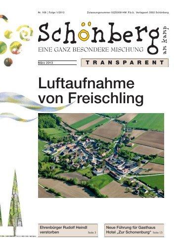 Luftaufnahme von Freischling - Schönberg am Kamp