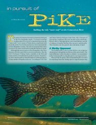 In Pursuit of Pike - New Hampshire Fish and Game Department