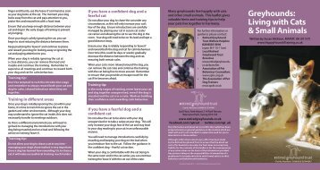 Greyhounds - Happy Hounds Dog Training