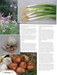 Onions - Savoury Staples - ggm.co.nz - Page 2
