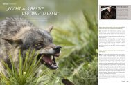 der DWV im Magazin HALALI 1-2013 - Inteview zum Thema