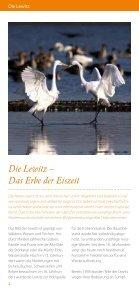 """Lewitz-Kieker """"Albert"""" – Schiff ahoi! - Landart Lewitz - Seite 4"""