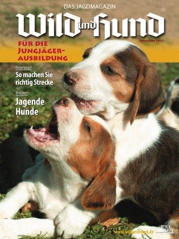 Jagende Hunde - Wild und Hund
