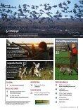 Jagende Hunde - Wild und Hund - Seite 3
