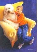 Cat & Dog - Dr. Andrea Vanek Gullner - Seite 2
