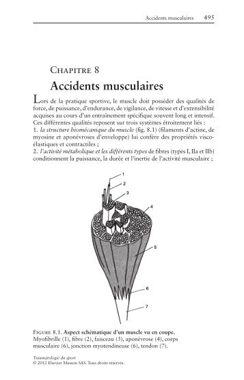 Accidents musculaires - Decitre