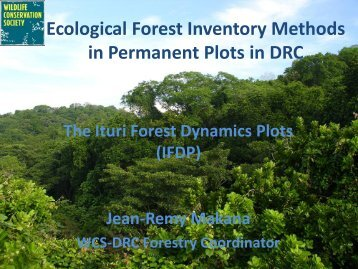 Ecological Forest Inventory Methods in Permanent Plots in DRC