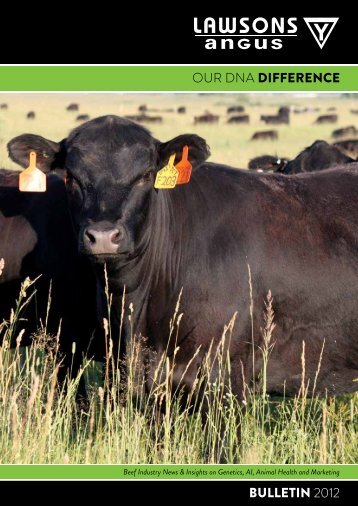 Our DNA DiFFERENCE BULLETiN 2012 - Lawsons Angus