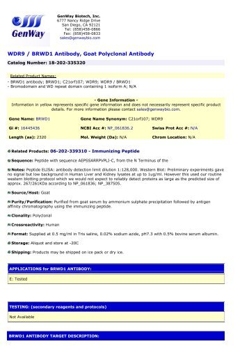 WDR9 / BRWD1 Antibody, Goat Polyclonal Antibody