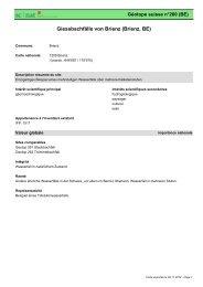 Giessbachfälle von Brienz (Brienz, BE) - admin.ch