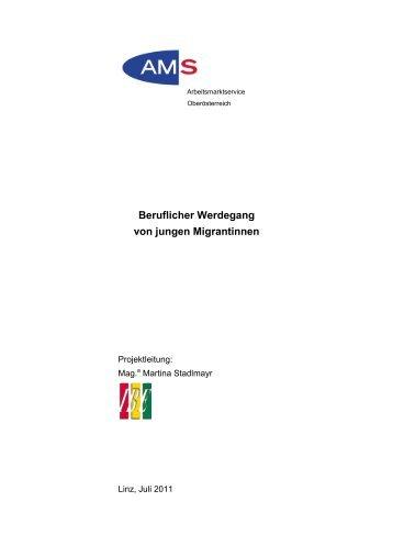 Beruflicher Werdegang von jungen Migrantinnen - Institut für Berufs ...