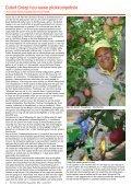 Die Plaaswerker • The Farmworker - AMG Media & Promotions - Page 4