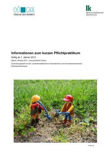 Informationen zum kurzen Pflichtpraktikum (2013) - insider