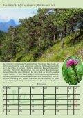 potentielle natürliche vegetation deutschlands und ... - IVL - Page 3