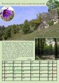 potentielle natürliche vegetation deutschlands und ... - IVL - Page 5