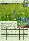 potentielle natürliche vegetation deutschlands und ... - IVL - Page 7