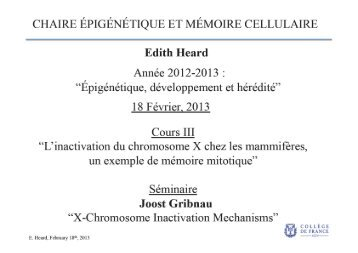 Mechanisms underlying X inactivation? - Collège de France