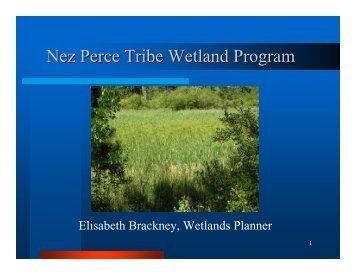 Nez Perce Tribe Wetland Program - Nez Perce Soil and Water ...