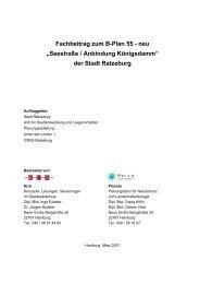 """Fachbeitrag zum B-Plan 55 - neu """"Seestraße ... - Ratzeburg baut"""