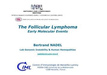 The Follicular Lymphoma