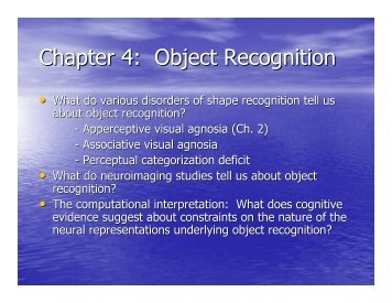 Chapter 4: Object Recognition - Play Psych Mun