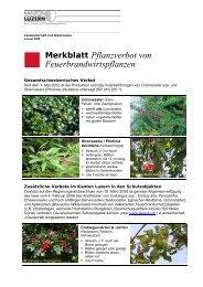 Merkblatt Pflanzverbot von Feuerbrandwirtspflanzen