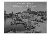Sturm und Alkohol – Schiffswracks in der Schweiz - Lake It