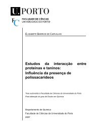 Tese - Faculdade de Ciências - Universidade do Porto