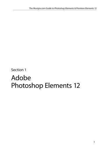 Adobe Photoshop Elements 12 - Muvipix.com