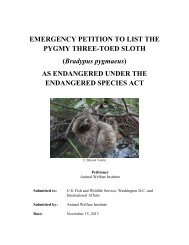 EMERGENCY PETITION TO LIST THE PYGMY THREE-TOED SLOTH