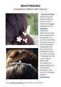 Brauthaarschmuck und Schleier - Braut-Accessoires von Rosine M. - Seite 2
