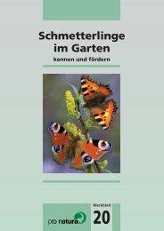 Schmetterlinge im Garten - Walkringen